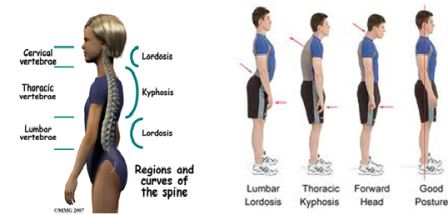 Low Back Pain in Adolescents and young athletes